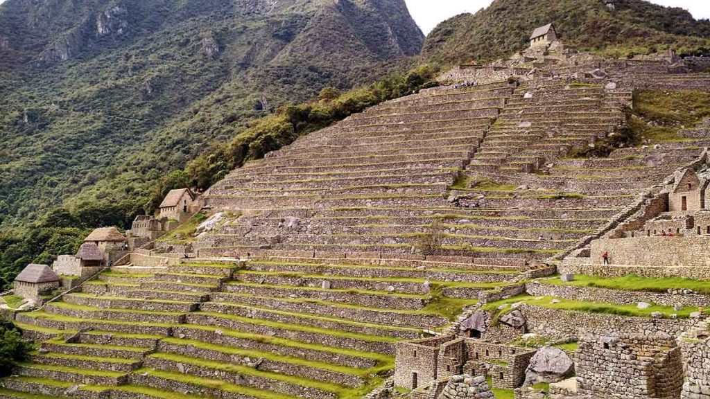 The descending Inca terraces in Machu Picchu. Each one is built perfectly straight across with stones and leveled. They each have gras growing on them.