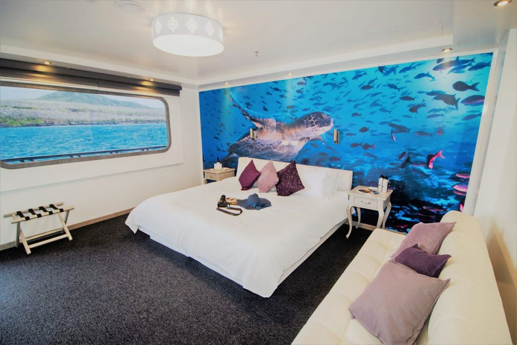 The Camila Galapagos cruise's Stateroom has a large white bed with a photo image of a swimming turtle that takes up the entire wall behind it. To the right is a white couch with purple pillows. To the left is a long rectangular window.