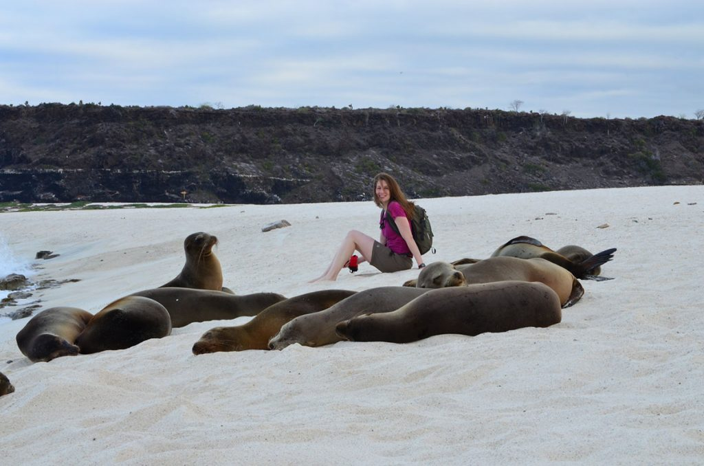 A young woman in a deep pink T-shirt sits behind a group of Galapagos sea lions napping on a white sandy beach with a black rocky landscape in the background.