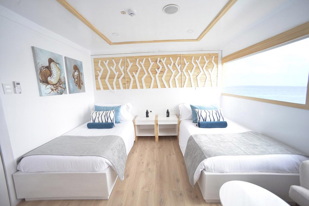 The Sea Star Journey Galapagos cruise's twin suite has two twin sized beds with white, gray, and blue linens and long rectangular window, and light wood finishings.