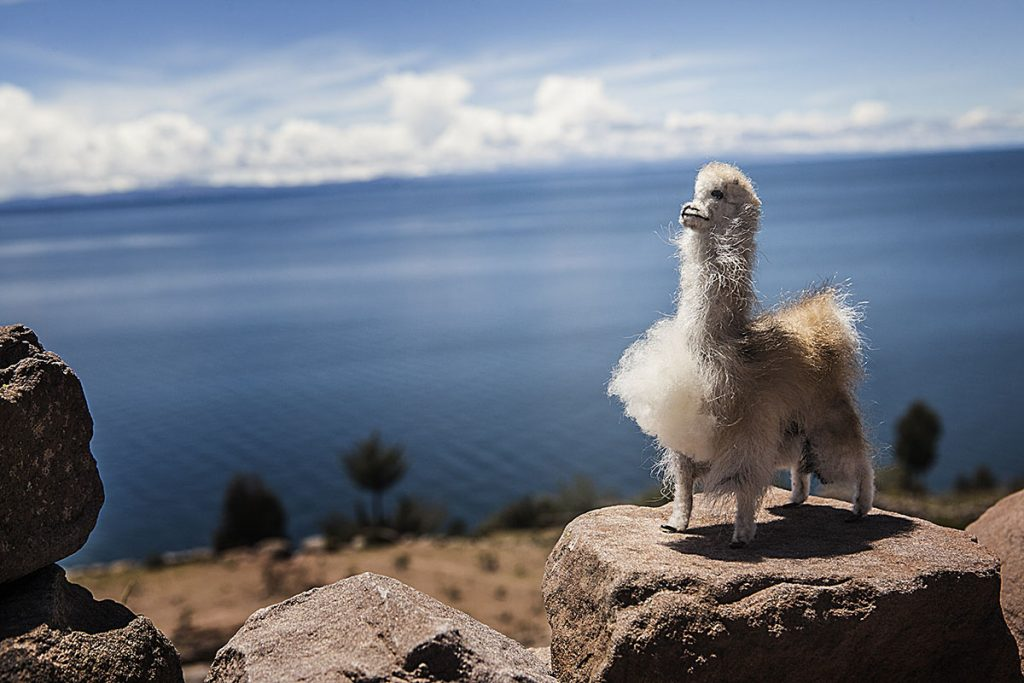 A fuzzy llama souvenir perched on a rock wall overlooking Lake Titicaca.